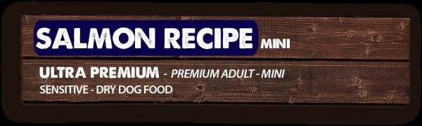 salmon-recipe-mini